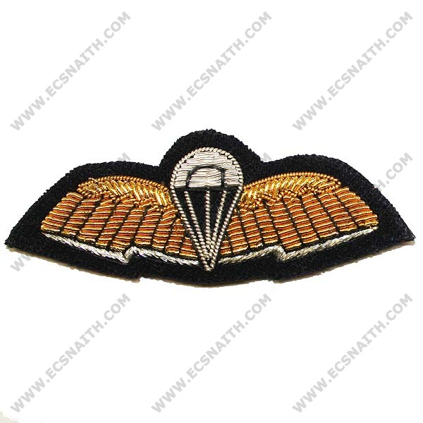 Special Forces Communicator Wings On Navy No1