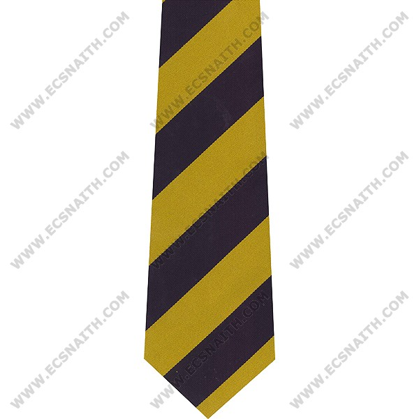 PWRR Polyester Striped Tie
