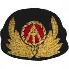 Air Anglia Cap Badge
