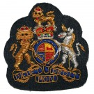 RAF Warrant Officers Dress Badge - Large