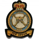RAF Regiment E11R Blazer Badge