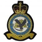 RAF 20 Squadron Wire Blazer Badge (Facta Non Verba)