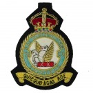 Royal Air Force Regiment Blazer Badge, 28 Squadron, Wire