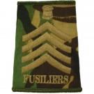 Fusiliers Rank Slides, CS95, (D/Maj)