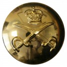 Army Physical Training Corps Button, Anodised (26L)