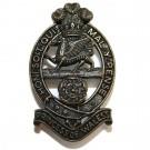 Princess of Wales Royal Regiment, Bronze