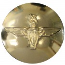 Parachute Regiment Button, Anodised (22L)