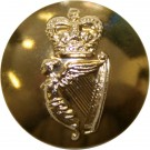 Irish Guards Button, Anodised (22L)