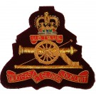 RA Wire Blazer Badge E11R