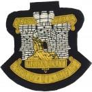 Devonshire and Dorset Regiment Blazer Badge, Wire, Old Pattern