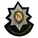 Worcestershire Regiment - Wire Blazer Badge