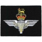 Parachute Regiment Navy Silk Blazer Badge