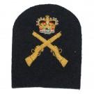 RN Skill at Arms Badge