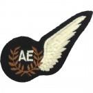 RAF Air Electronic's Brevet