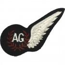 RAF Air Gunner's Brevet