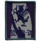 RWF Black Dragon Combat Badge