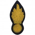 RE Navy Grenade Badge