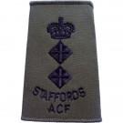 Staffords ACF Rank Slides, Olive Green, (Lt/Col)