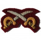 PT Instructor Gold On PARA Maroon Badge