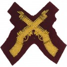 Skill At Arms Gold On PARA Maroon Badge