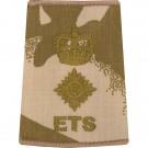 ETS Rank Slides, Desert, (Lt/Col)