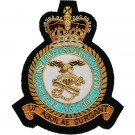 Royal Air Force Blazer Badge, Personnel & Training Commander