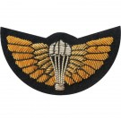 SAS Gold Wings On Navy Mess