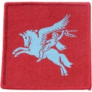 Airborne DZ Flash Badge