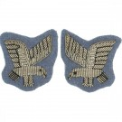 AAC SNCO Eagle Badge