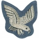 AAC Eagle No.1 Dress Dress Badge