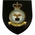 RAF Cranwell Wall Plaque