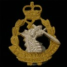Radc Gilt & Silver Collar Badge