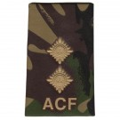 ACF Rank Slides, CS95, (Lt)