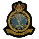 RAF PARA Test Unit Wire Badge