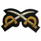 Assistant PT Instructor No1 (Gold on Navy)