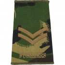 Fusiliers Rank Slides, CS95, (Cpl)