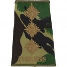 Fusiliers Rank Slides, CS95, (Capt)