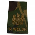 R WELSH Rank Slides, CS95, (WO1)