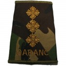 QARANC Rank Slides, CS95, (Capt)