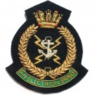 RN-Electrical-Branch-Wire-Blazer-Badge