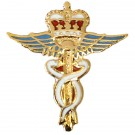 RAF Medical Lapel Badge