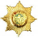 Cheshire Regiment Lapel Badge