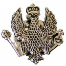 1st QDG Lapel Badge