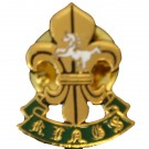 The King's Regiment Lapel Badge