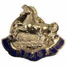 The King's Liverpool Lapel Badge