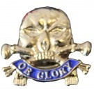 17th/21st Lancers Lapel Badge