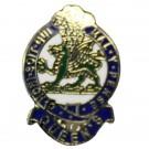 The Queen's Regiment Lapel Badge