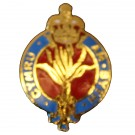 Welsh Guards Lapel Badge