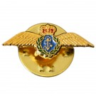 Fleet Air Arm Lapel Badge