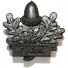 Mercian Bronze Collar Badges